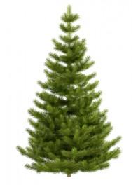 درخت کریسمس مصنوعی یا پلاستیکی با طول یک متر